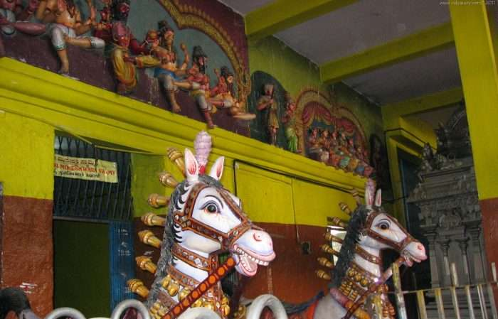 Horses at the temple