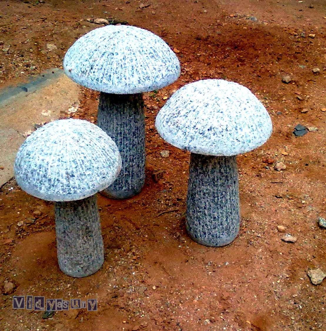 Present Moment Vidya Sury mushrooms