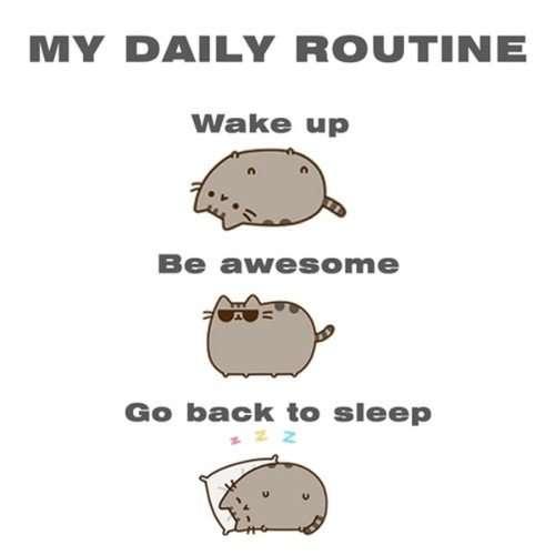 my amazing routine vidya sury