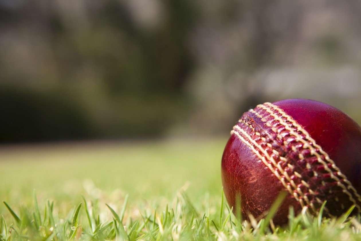 world cup cricket vidya sury