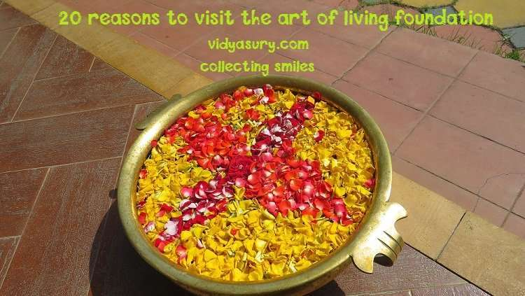 art of living 20 reasons to visit