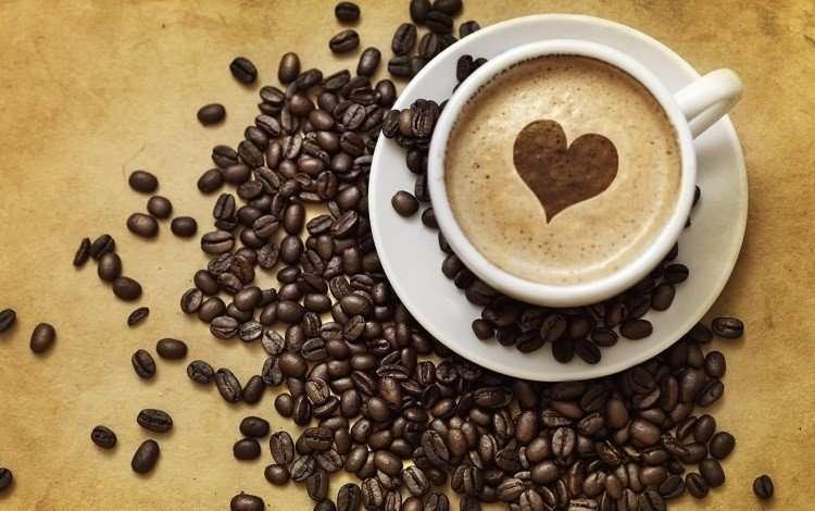 vidya sury coffee