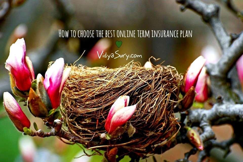 How to choose the best online term insurance plan Vidya Sury