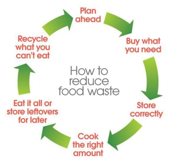 How to make the shift to a low carbon diet and save the world