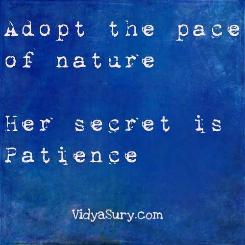 Adopt the pace of nature. 25 Inspiring quotes to get your mojo back