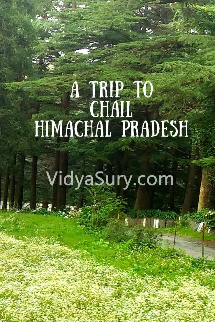 A trip to Chail Himachal Pradesh #Travel #Himachal #IncredibleIndia
