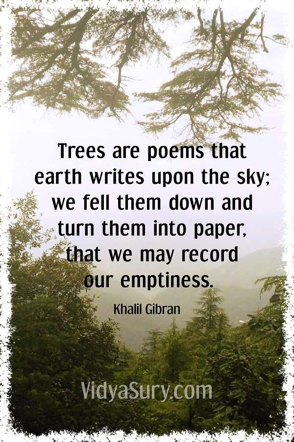 Trees are poems that earth writes upon the sky, We fell them down and turn them into paper, That we may record our emptiness. #inspirationalquotes #khalilgibran