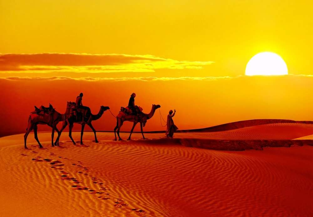 Rajasthan desert #SayYesToTheWorld #TheBlindList