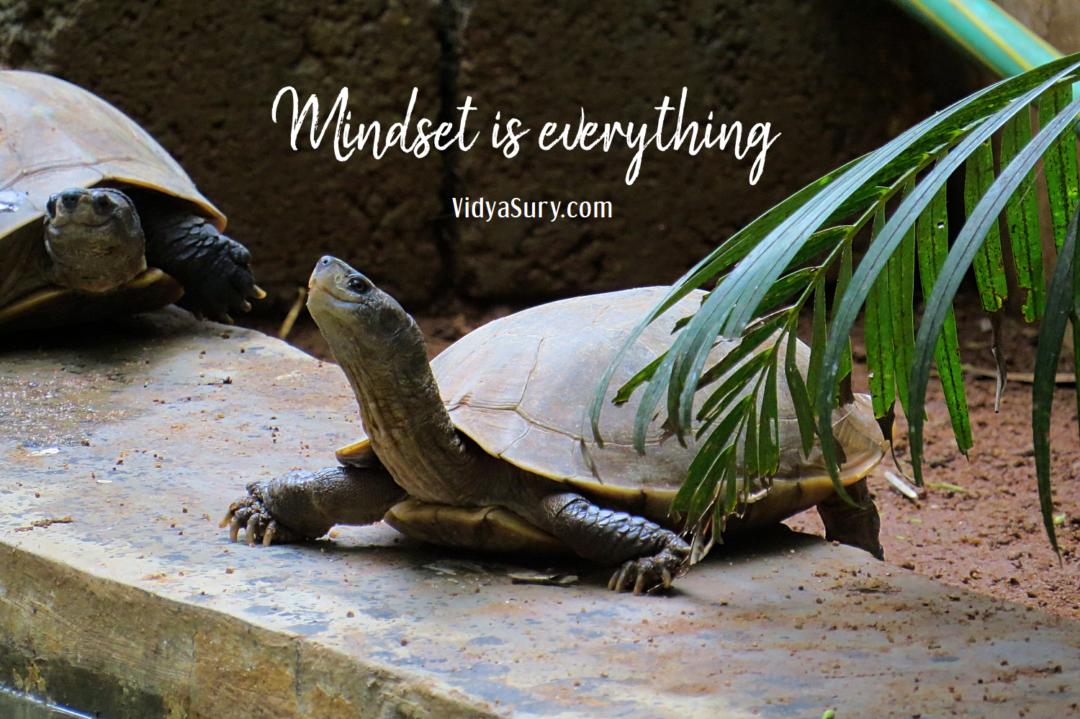 Mindset is everything. Gratitude Circle