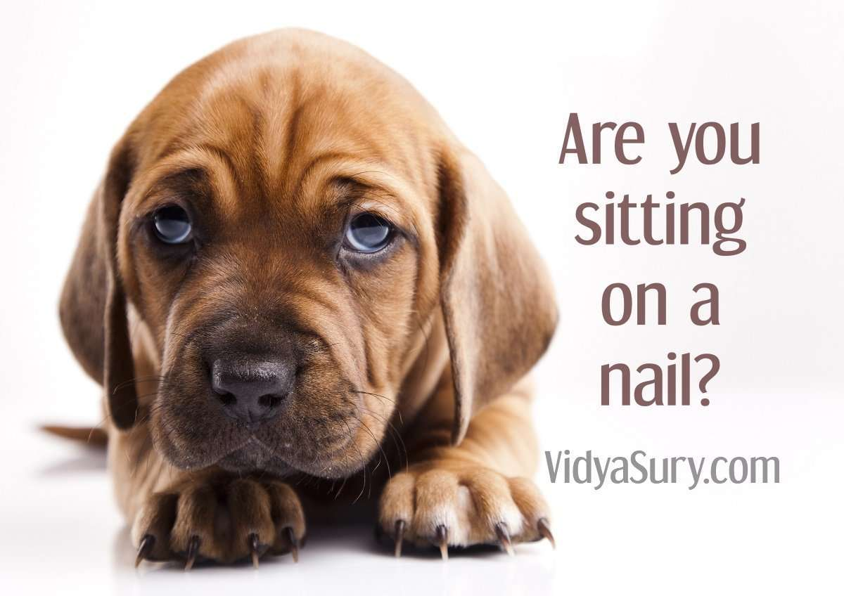 Are you sitting on a nail