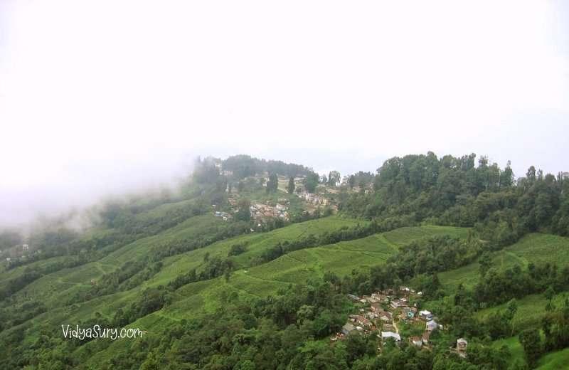 Darjeeling tea gardens Ten destinations I would love to visit again