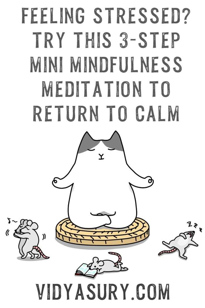 A 3 step mini mindfulness meditation exercise
