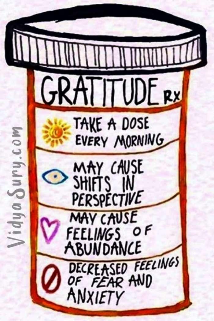 Gratitude Rx Never Have I Ever