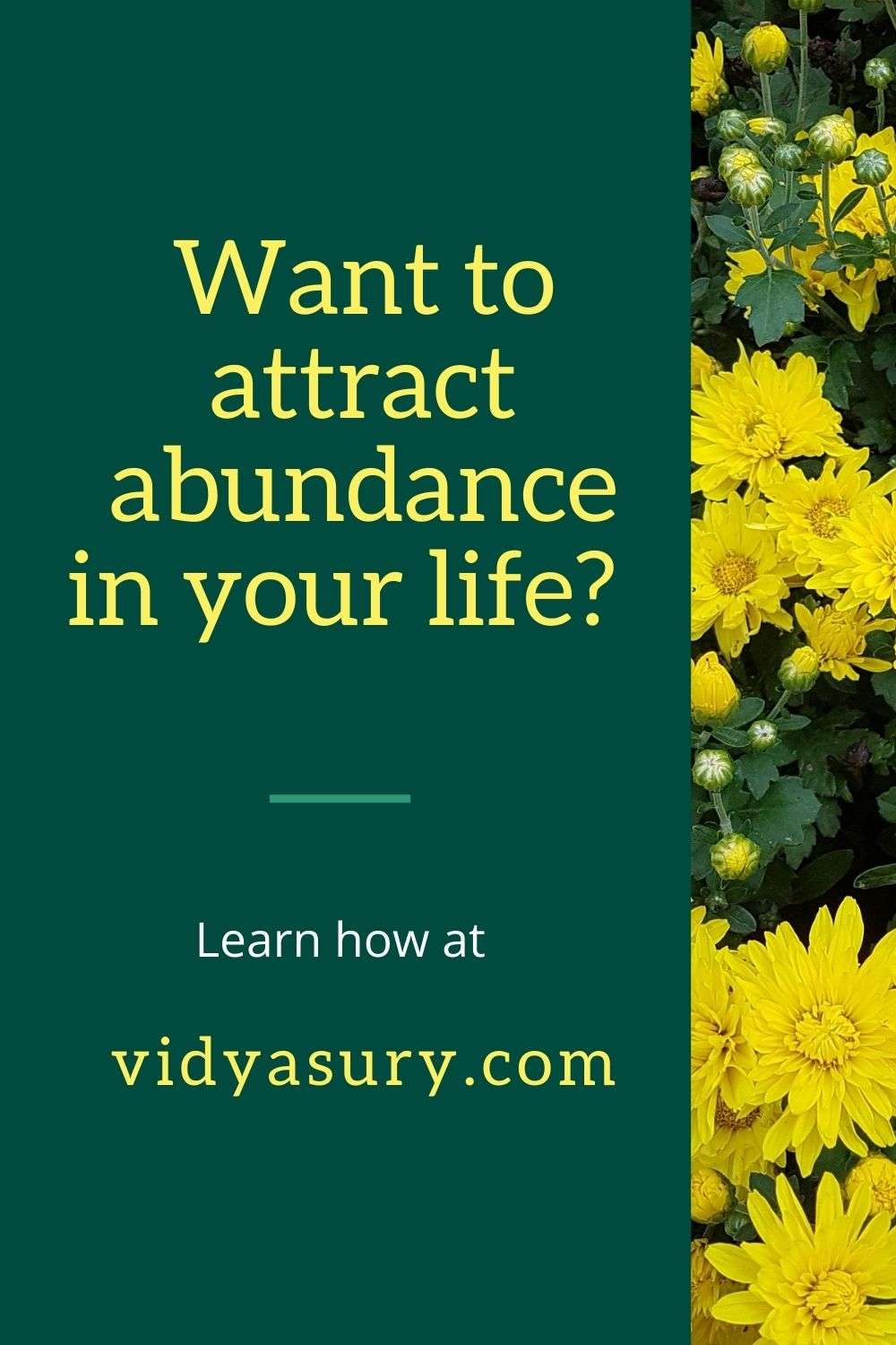 Want to attract abundance in your life