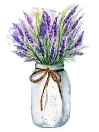 Lavender flowers at home for your wellbeing
